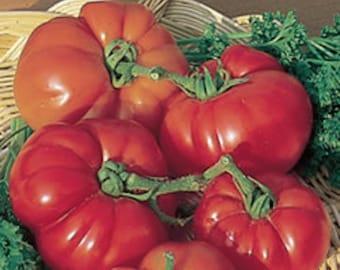 Super Marmande Tomato seeds