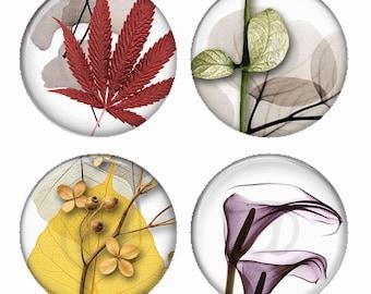 Ikebana feuille Composition aimants ou Pinback Buttons ou Flatback médaillons Set de 4