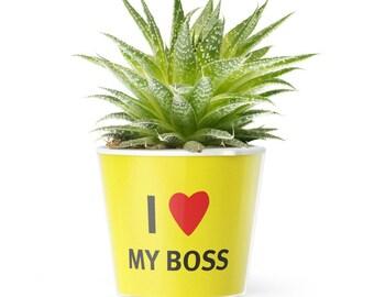 Lustiges Büro Prank Geschenk für den liebsten Chef und Arbeitgeber | I Love My Boss Blumentopf (ø16cm)