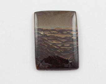 Picture Jasper Cabochon 25x35 Rectangle Deschutes Oregon Biggs Jasper L24 Vintage Hand Cut Agate
