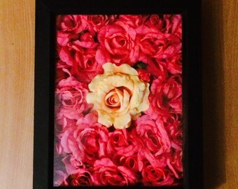 Pink rose shadow box