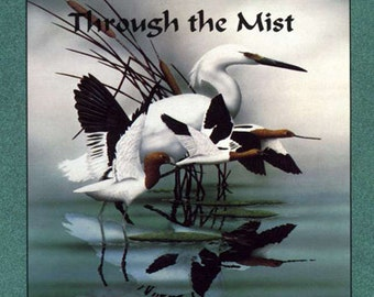 Through the Mist... a Flute and Harp CD by  David Blonski & Anne Roos... Free Shipping on all CD orders