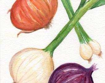 Onions watercolor painting original 5 x 7 kitchen decor, onions original watercolor painting, small vegetables watercolor wall art