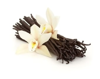 10 Premium Gourmet Vanilla Beans - Madagascar Bourbon, Fresh & Prime Grade A for Vanilla Extract and Baking (10 BEANS)