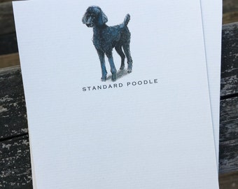Standard Poodle Dog Note Card Set