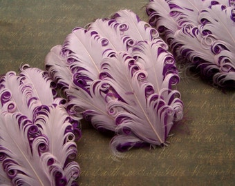 SET OF 5 PINKBERRY feather pads - Pink on Berry Curled Goose Nagorie Feather Pad