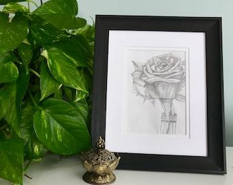 Rose  - Day 3 - Original Pencil Drawing