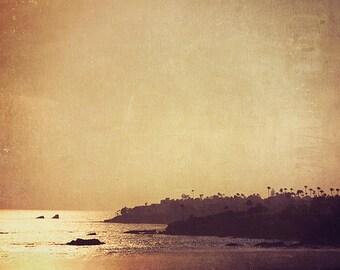 Laguna Beach photography, California seaside, photograph, palm trees ocean, purple plum earth tones sunset  dreamy fine art print 5x7