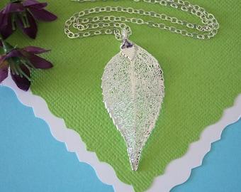 Silver Evergreen Leaf Necklace, Real Leaf Necklace, Evergreen Leaf, Sterling Silver Leaf Necklace, LC30