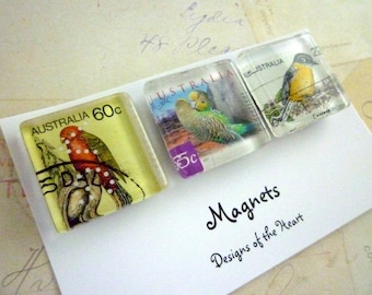Square Glass Magnet set - Australian Recycled Stamp Collection - Australian Birds, Parrots