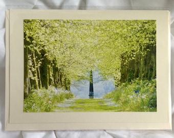 Lime Tree Walk Card, Lime Trees, Original Photography Cards, Nature, Trees, Seasons,