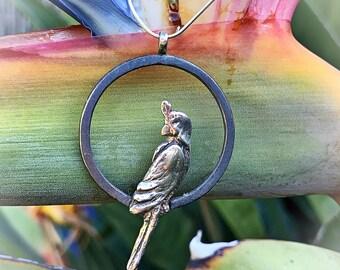 Silver Parrot pendant. Silver Parrot necklace. Silver Parrot pendant. Silver Parrot necklace.