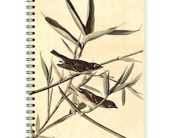 Notebook A5 - Flycatcher