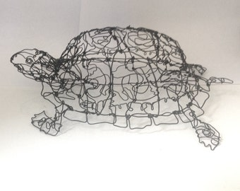 Box Turtle Wire Drawing Sculpture Art