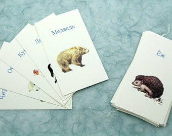 Domestic and Forest Animals in Russian, French, English, German: Translation cards, Word game, children's game, learn a language