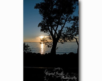 Sunset Photography, Blue Lake House Bathroom Wall Art Print, Nature Themed Cottage Accent, Tree Silhouette, 8x10 8x12 11x14 12x18 Inches