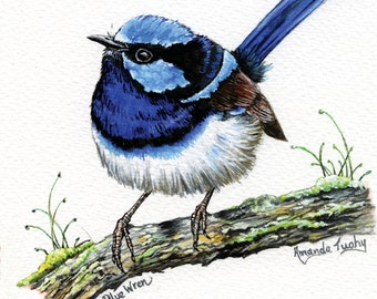 Blue Wren Greeting Card (Set of 2)