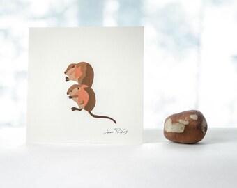 Muskrat drawing, Canadian wildlife, muskrat illustration, wild animals, natural history art, woodland animal nursery wall art, home decor