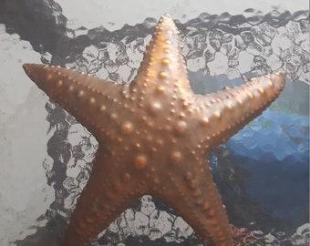 Copper star fish