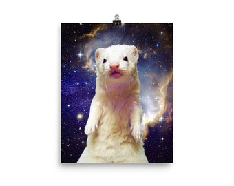 Space Ferret Poster