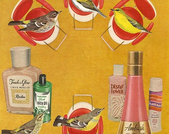 Beauty school. Limited edition collage print by Vivienne Strauss.