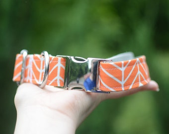 PREMIUM COLLECTION, Eco Canvas Collar, TANGERINE, Dog, Collar, Dog Collar, Waterproof, Buckle, Martingale