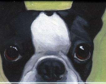 Boston Terrier magnet, cute boston terrier gift, boston terrier art, boston terrier painting, dog art magnet