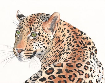 Leopard Watercolor Painting- animal art- print of watercolor painting 5 by 7 size