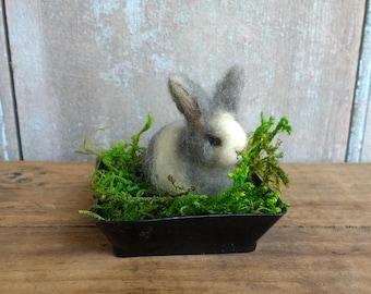 Adorable Miniature Bunny Rabbit Spring Easter Lisa Haldeman Lovinclaydolls Basket Rabbits Farm Animals Gift Birthday Pet Lover