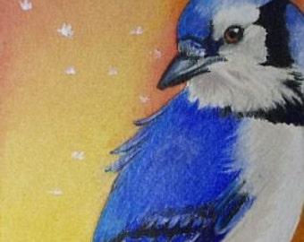 Blue Jay Bird Miniature Art by Melody Lea Lamb ACEO Giclee Print