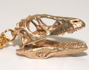 Dinosaur Necklace - Dinosaur Pendant - Dinosaur Jewelry - Deinonychus Dinosaur Skull Pendant Bronze Paleontology Gifts