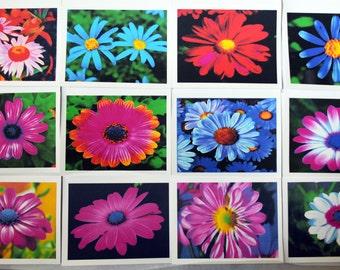 Bright Color Gerbera Daisies - Notecards