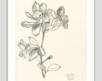Cherry Blossom drawing ORIGINAL black ink drawing of cherry blossom - Floral botanical drawing by Catalina