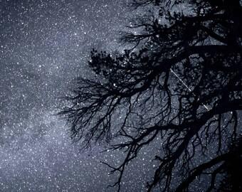 Falling Stars - Perseid Meteor Shower Milky Way Shooting Star night photography sky art comets digital download