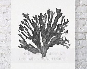 Sea Coral in Charcoal Print