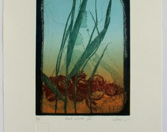 Reed bed ecology artwork. Colour etching limited edition print