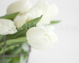 White flower stock photo | Spring stock photo - Photo for Instagram - Simple stock photo - Flower bunch stock photo - Styled stock photo