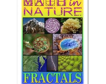Math in Nature: Fractals