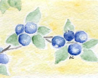Original Watercolor ACEO Art Card, Blueberries, Summer Fruit