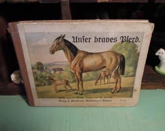 "Vintage German Child's Book / ""Our good Horse"" / Unier braves Bierd / 1910's Book on Horses"