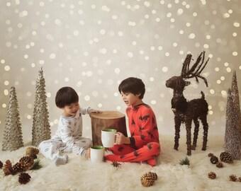 Christmas Tree Twinkle Lights Bokeh Photographer Overlay for Photoshop