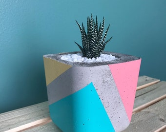 Handmade Colourful Concrete Planter for succulents and cacti