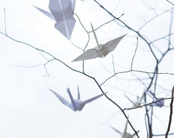 Origami Crane Peace Sky Branches Tree Fine Art Photo Photograph 8x10 Oragami
