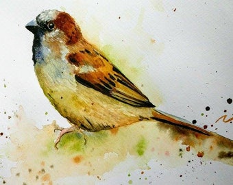 Original Watercolour painting of a Sparrow
