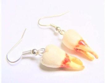 Human Tooth Earrings, Halloween Earrings, Tooth Earrings, Tooth Jewelry, Halloween Jewelry, Polymer Clay Scary Earrings Macabre Jewelry Bone