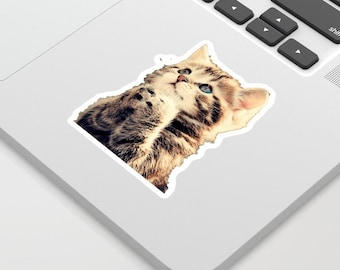 CAT CUTE  -Sticker