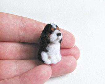 Tiny Cavalier King Charles spaniel