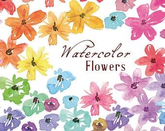 Watercolor Flowers, Digital Clip Art, Handpainted