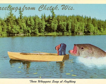 Chetek Wisconsin Large Fish Snapping at Fisherman's Rear Vintage Exaggeration Postcard (unused)