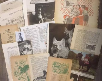 We LOVE Our Pets Inspired Mixed Media Junk Journal Scrapbook Collage Inspiration Box
